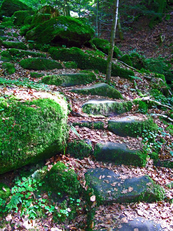 5-treppe