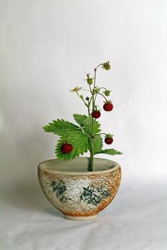 erdbeervase