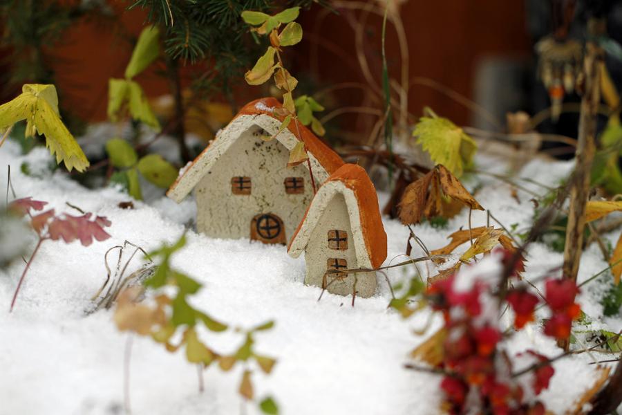 schneig