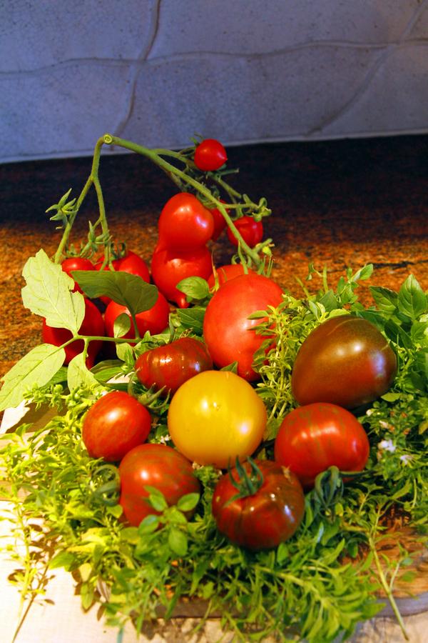 6-tomaten
