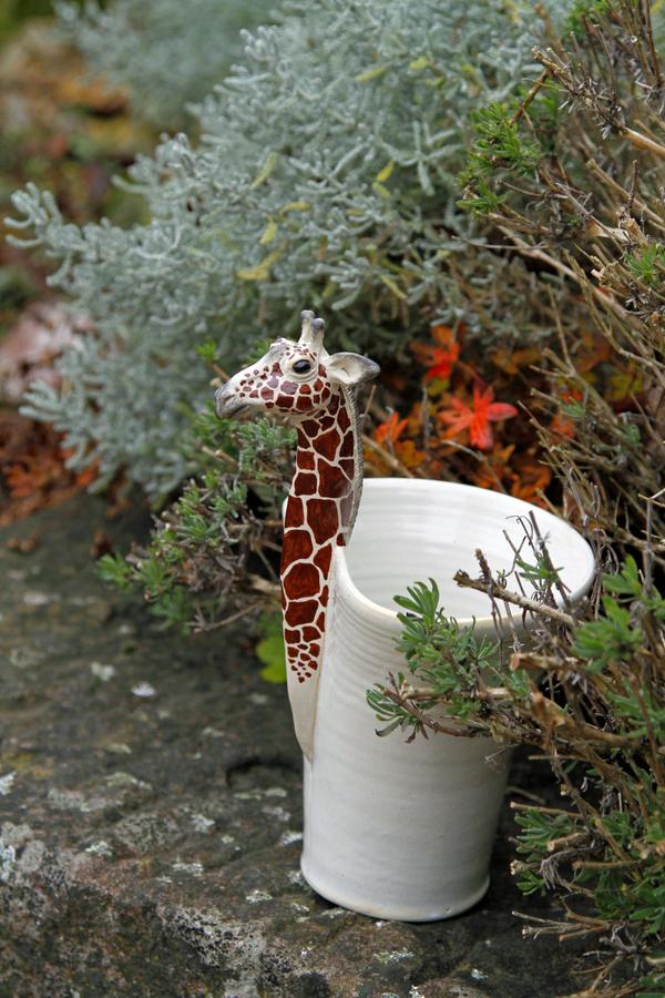 1-giraffe