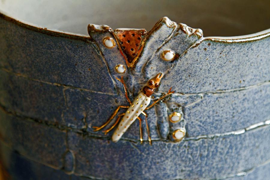3-insekt1