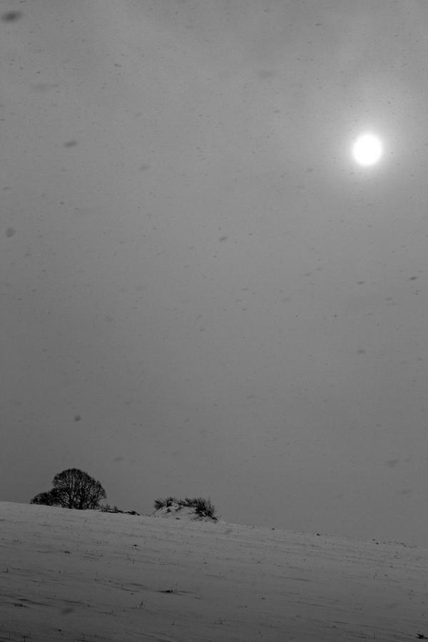 1-wintersonne