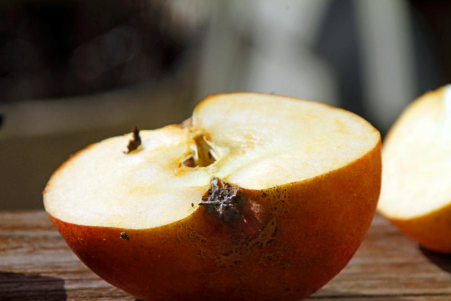 2-äpfel