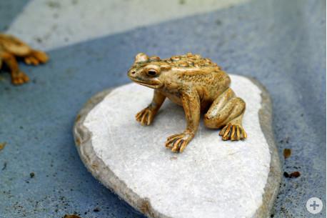 4-frosch